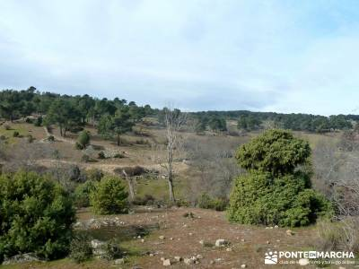 Fortines y Trincheras: Río Cofio; hoces del duraton san mames la pedriza viajes singles
